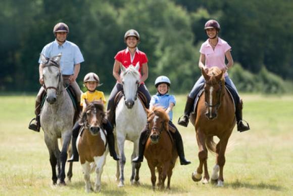 Initiation à la Balade à cheval pour débutants